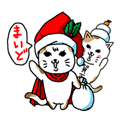 Cat and Christmas and New Year