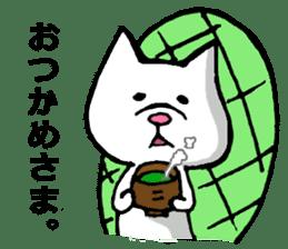 Tortoise cat sticker #1978569