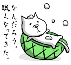 Tortoise cat sticker #1978571
