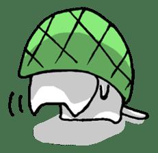 Tortoise cat sticker #1978579