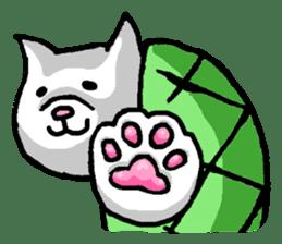 Tortoise cat sticker #1978594