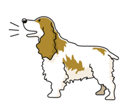 English Cocker Spaniel sticker #1992529