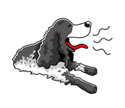 English Cocker Spaniel sticker #1992537