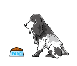 English Cocker Spaniel sticker #1992545