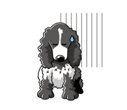 English Cocker Spaniel sticker #1992555