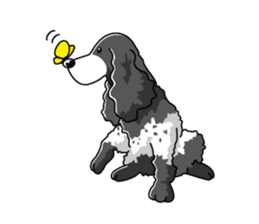 English Cocker Spaniel sticker #1992563