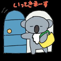everyday koala