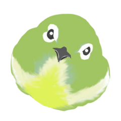 Bird is watching.