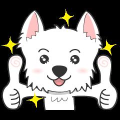 I LOVE West Highland White Terrier.