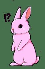 This is Rabbit. sticker #2014915