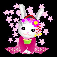 Maiko bunny Kyoto valve