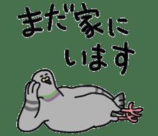 Pigeon 2 sticker #2040966