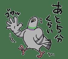 Pigeon 2 sticker #2040968