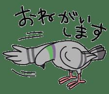 Pigeon 2 sticker #2040970
