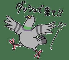 Pigeon 2 sticker #2040996