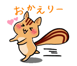 Squirrels and cute cat sticker #2056719