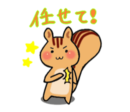 Squirrels and cute cat sticker #2056720
