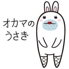 The rabbit of gay
