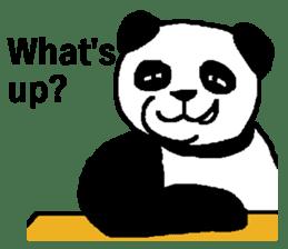 Nice Panda Guy (English Ver.) sticker #2069054