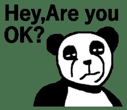 Nice Panda Guy (English Ver.) sticker #2069059