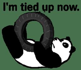 Nice Panda Guy (English Ver.) sticker #2069070