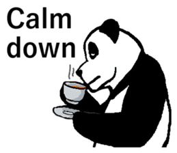 Nice Panda Guy (English Ver.) sticker #2069085