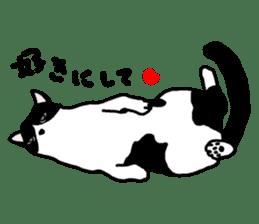 A cat seldom talks sticker #2096416