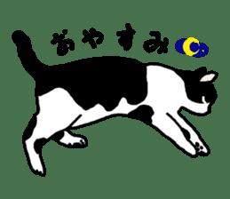 A cat seldom talks sticker #2096428