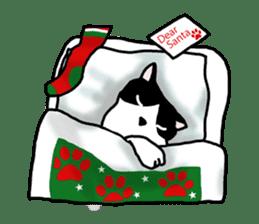 A cat seldom talks sticker #2096452