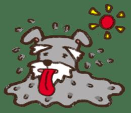 Schnauzer:Bubble!! sticker #2098436