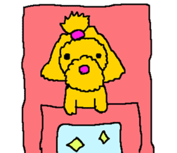 Toy poodle no.1 sticker #2111705