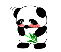 Bashful Panda sticker #2114390
