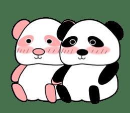 Bashful Panda sticker #2114393