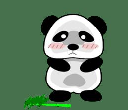 Bashful Panda sticker #2114404