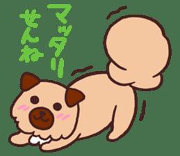Michael a hybrid dog living in Hakata 2 sticker #2118114