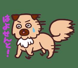 Michael a hybrid dog living in Hakata 2 sticker #2118120