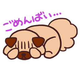 Michael a hybrid dog living in Hakata 2 sticker #2118121