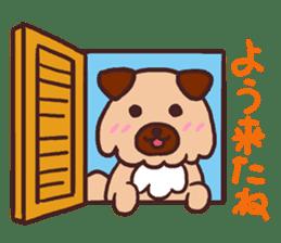 Michael a hybrid dog living in Hakata 2 sticker #2118126