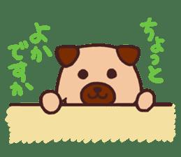 Michael a hybrid dog living in Hakata 2 sticker #2118132