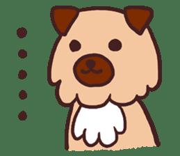 Michael a hybrid dog living in Hakata 2 sticker #2118133