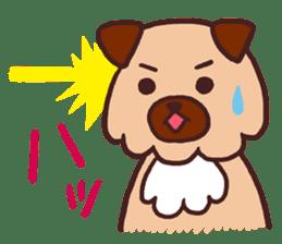 Michael a hybrid dog living in Hakata 2 sticker #2118137