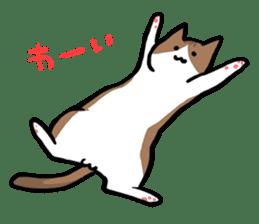 The Sticker of my cat sticker #2120224