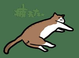 The Sticker of my cat sticker #2120225
