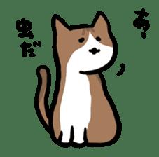 The Sticker of my cat sticker #2120235