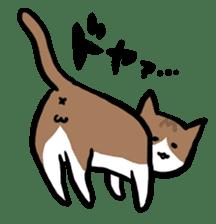 The Sticker of my cat sticker #2120237