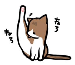The Sticker of my cat sticker #2120253