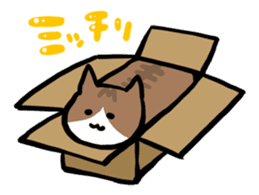 The Sticker of my cat sticker #2120255