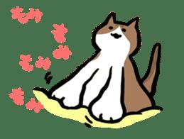 The Sticker of my cat sticker #2120260