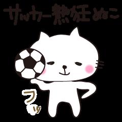 Crazy Soccer CAT