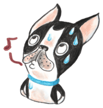 CHLOE&BO sticker #2131513